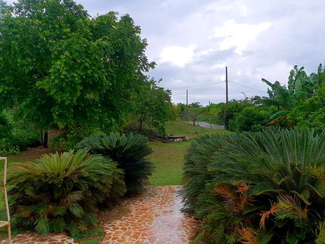Westmoreland, Negril image - 14