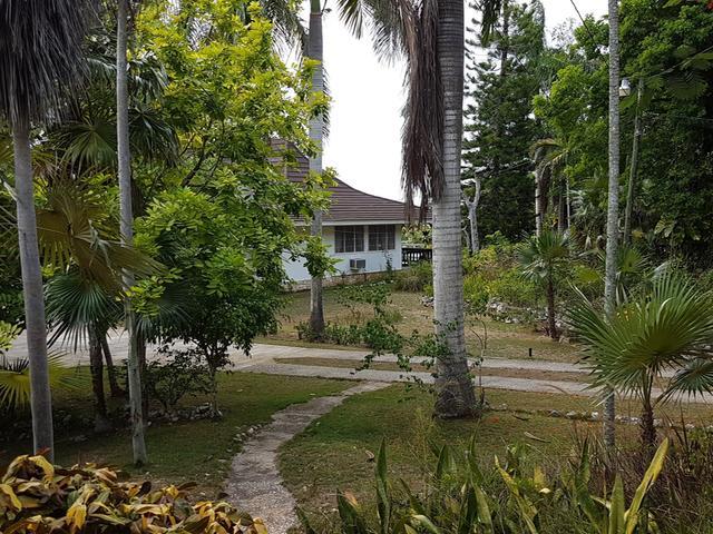 St. James, Montego Bay image - 40