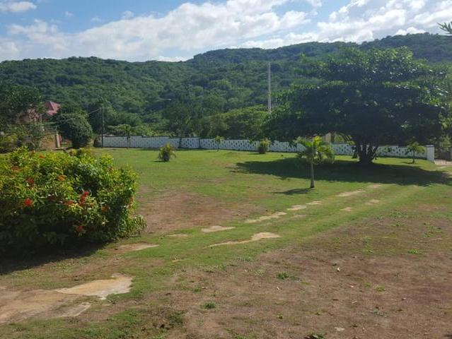 St. Ann, Discovery Bay image - 2