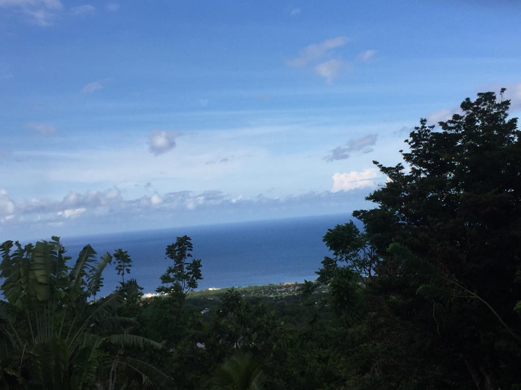 St. Ann, Runaway Bay image - 6