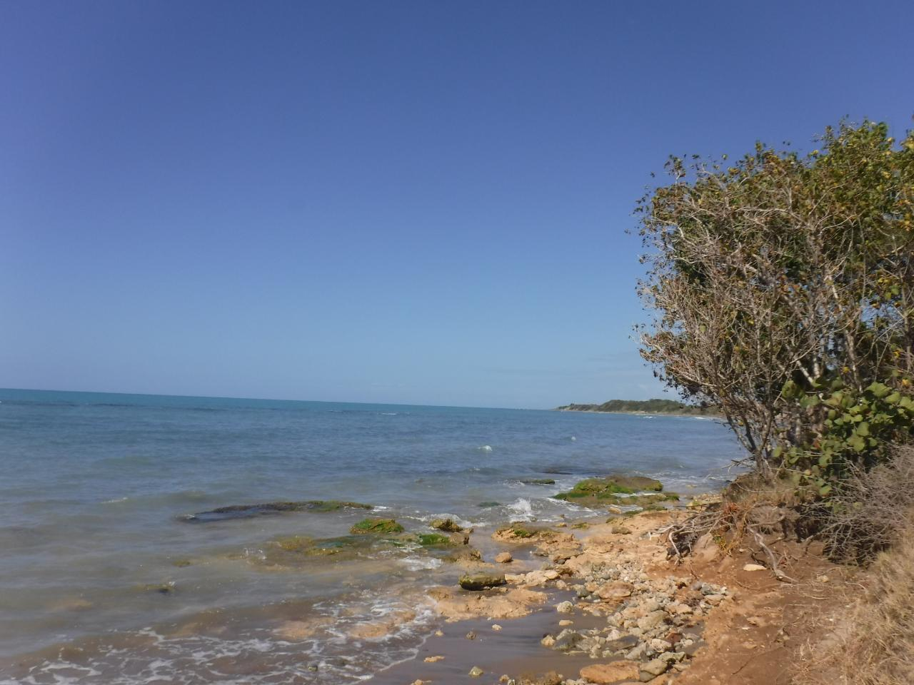 St. Elizabeth, Treasure Beach image - 3