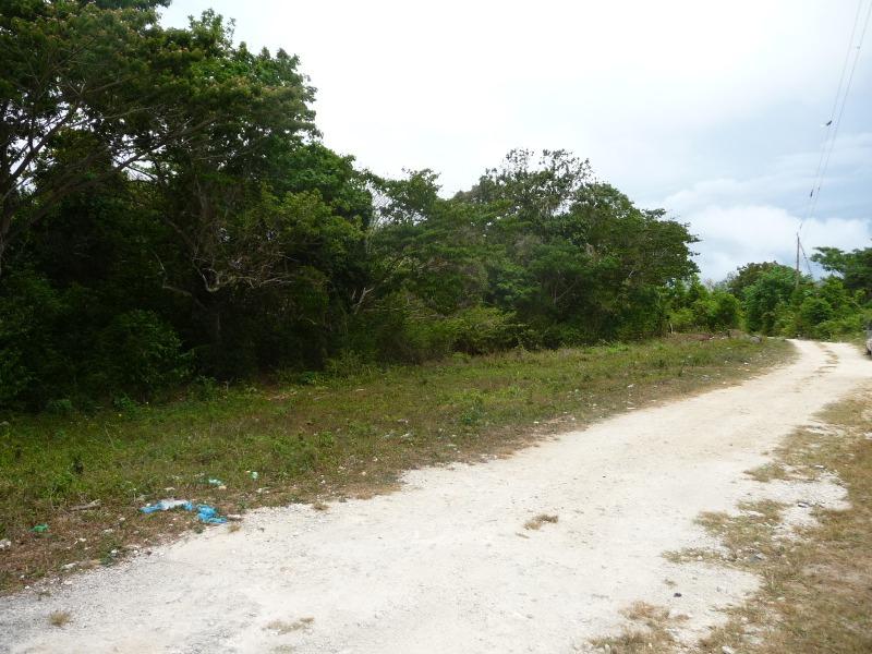 St. Ann, 9 acres, Ocho Rios image - 16