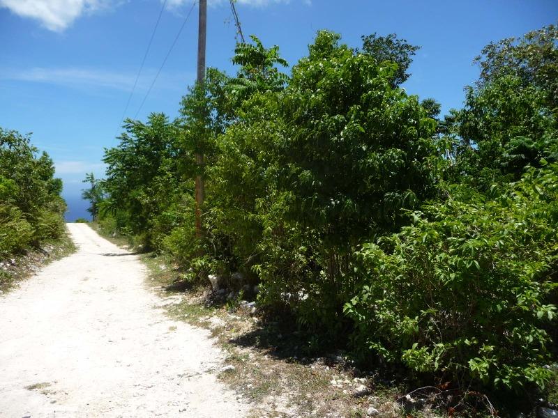 St. Ann, 9 acres, Ocho Rios image - 13
