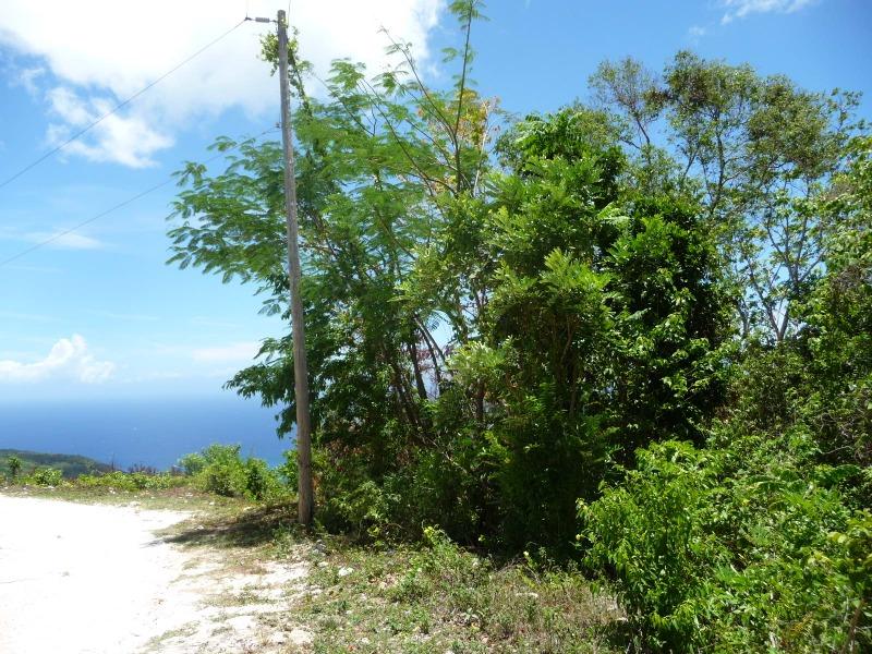 St. Ann, 9 acres, Ocho Rios image - 8