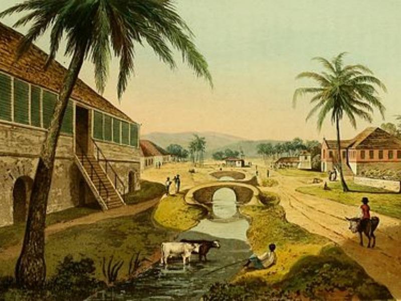 St. Thomas, Amity Hall, Golden Grove image - 12