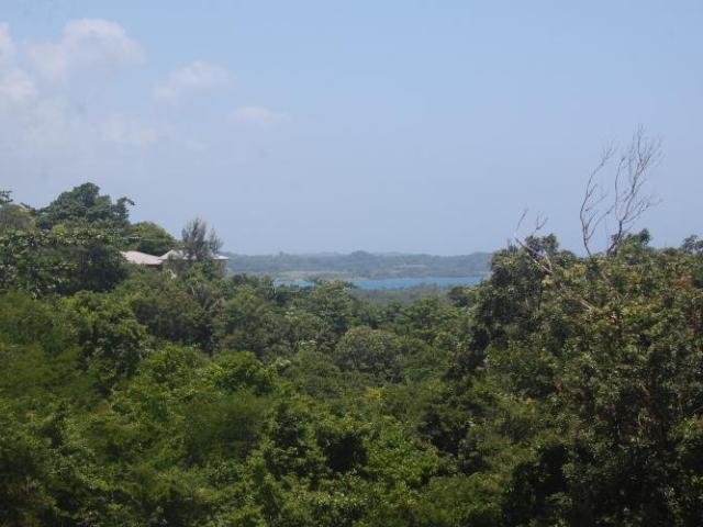 Hanover, Green Island image - 24
