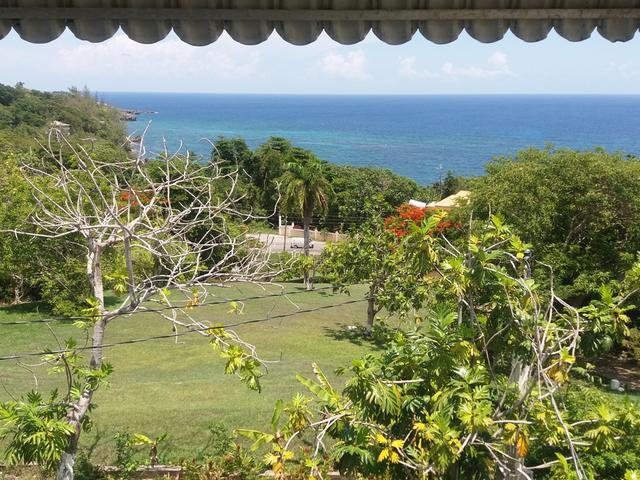St. Mary, Port Maria image - 9