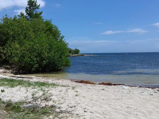 St. Thomas, Morant Bay image - 7