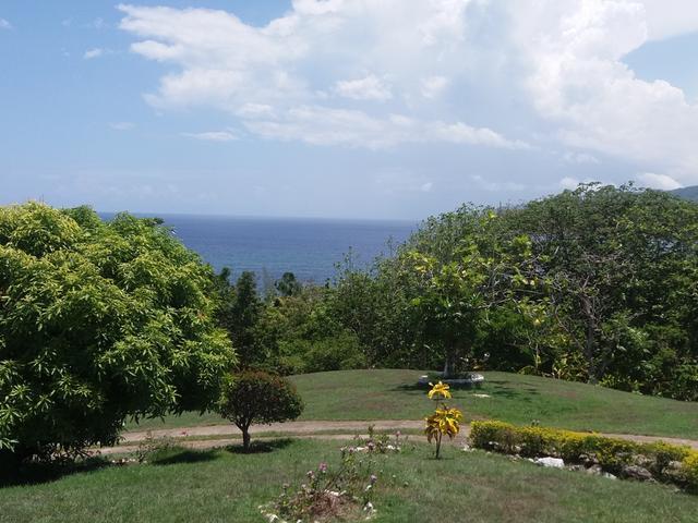 St. Mary, Port Maria image - 11