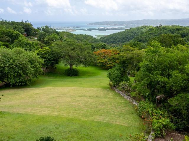 St. James, Montego Bay image - 50