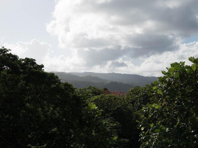 St. Ann, Ocho Rios image - 37