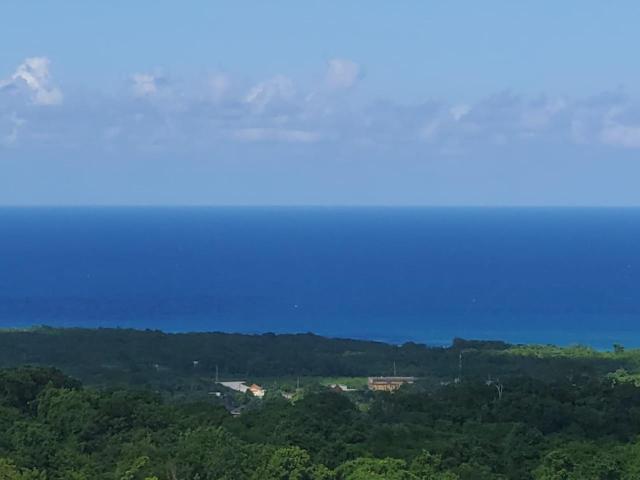 St. Ann, Runaway Bay image - 2