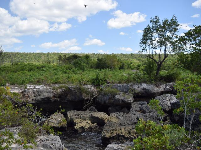 St. Ann, Discovery Bay image - 17