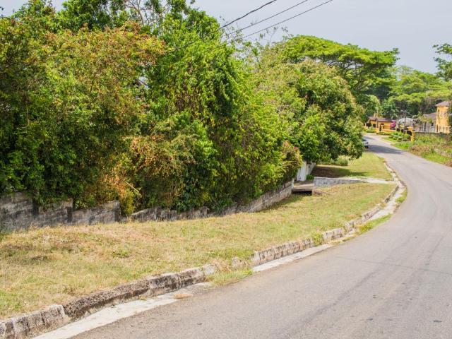St. Ann, Runaway Bay image - 17