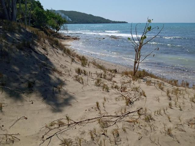 St. Elizabeth, Treasure Beach image - 5