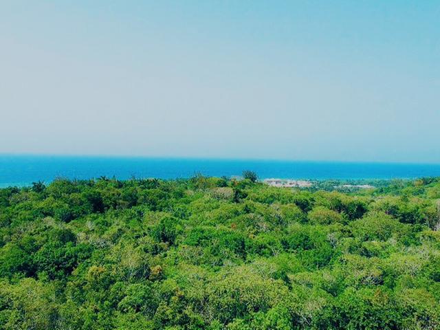 St. James, Montego Bay image - 15