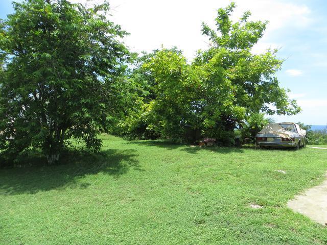 Westmoreland, Negril image - 37