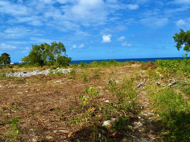 St. Ann, Discovery Bay image - 20