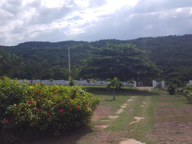 St. Ann, Discovery Bay image - 9