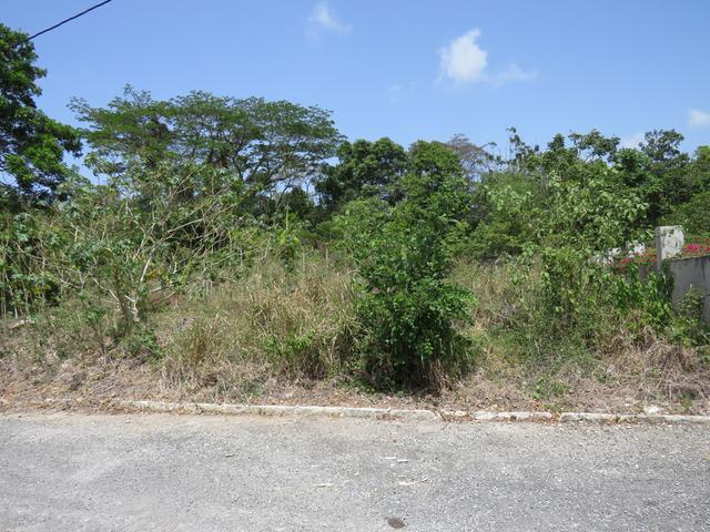 St. Ann, Ocho Rios image - 3