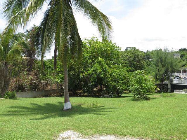 Westmoreland, Negril image - 41
