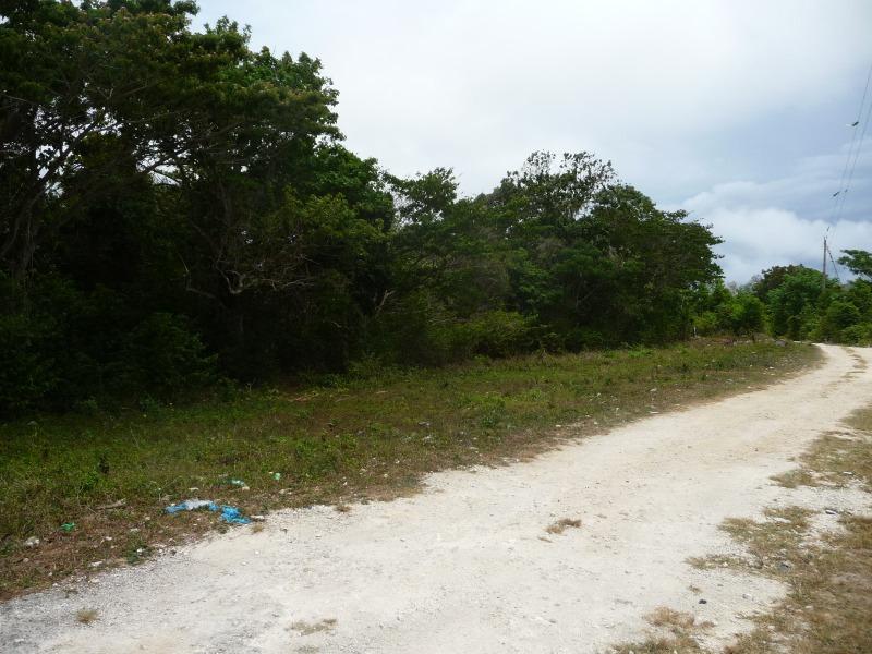St. Ann, 9 acres, Ocho Rios image - 1