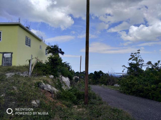 Westmoreland, Negril image - 12