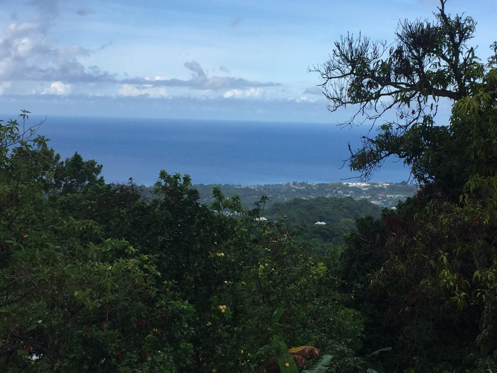 St. Ann, Runaway Bay image - 5