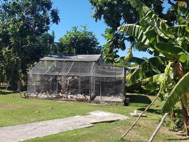 St. James, Montego Bay image - 48