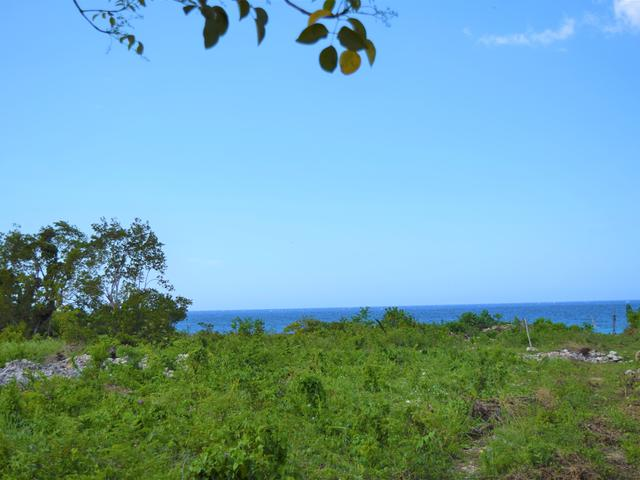 St. Ann, Discovery Bay image - 11