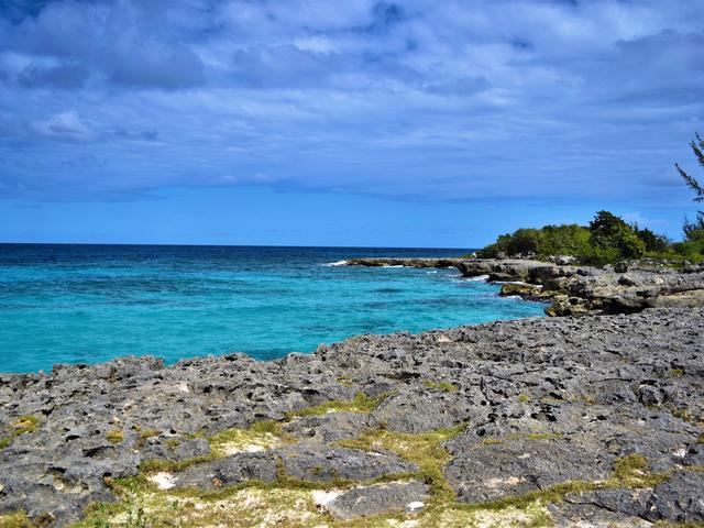 St. Ann, Discovery Bay image - 5
