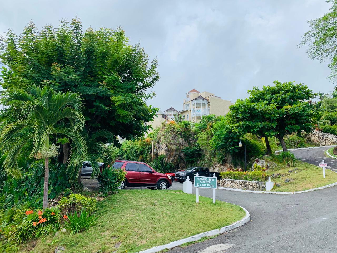 St. Ann, Ocho Rios image - 21