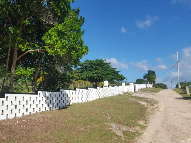 St. Ann, Discovery Bay image - 19