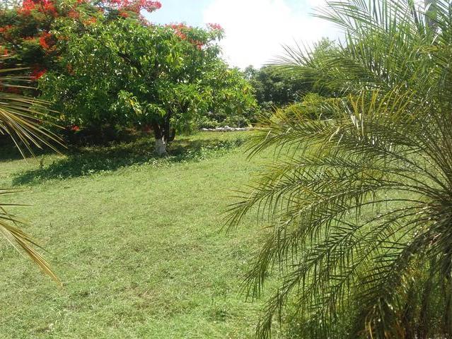 St. Mary, Port Maria image - 2