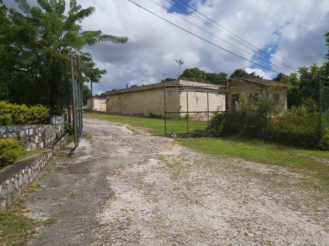 St. Ann, Moneague image - 6