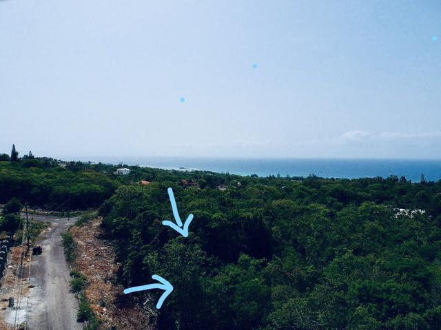 St. James, Montego Bay image - 18