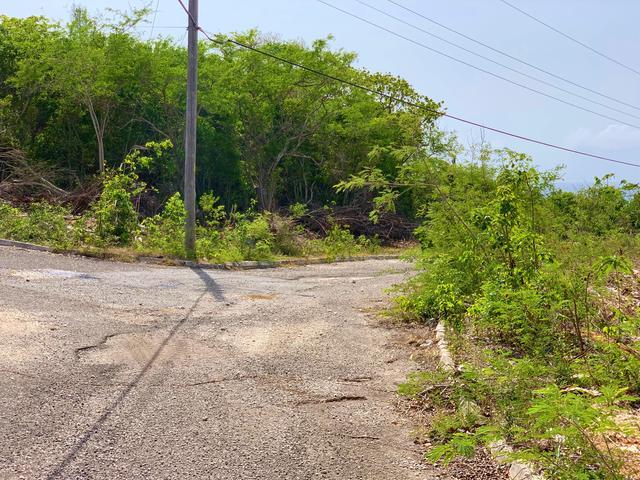 St. James, Montego Bay image - 25