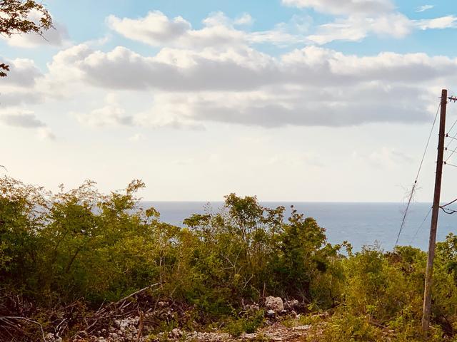 St. James, Montego Bay image - 34