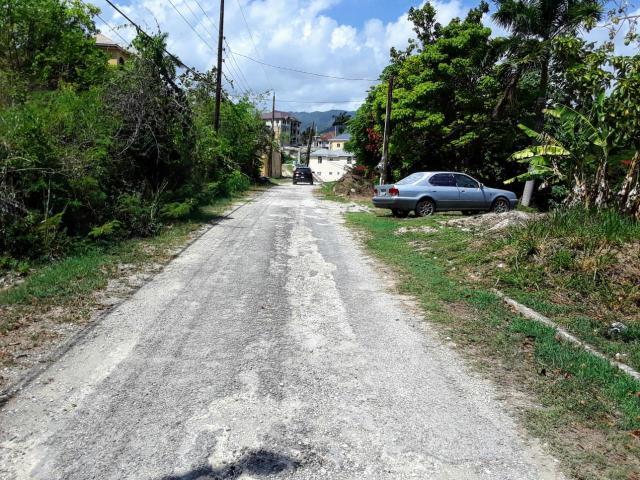 St. Ann, St. Ann's Bay image - 18
