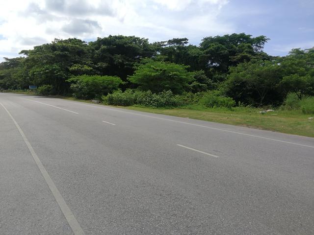 Westmoreland, Savanna-La-Mar image - 1