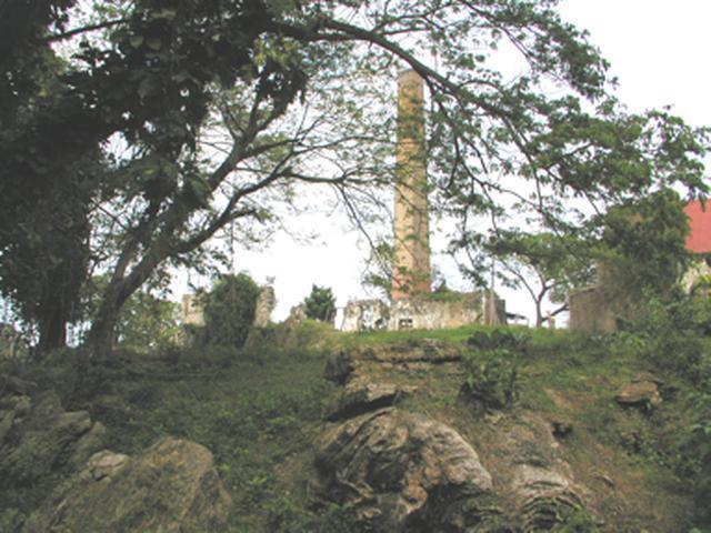 St. Ann, Laughlands image - 9