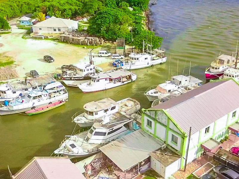 St. Elizabeth, Black River Town, Black River image - 12