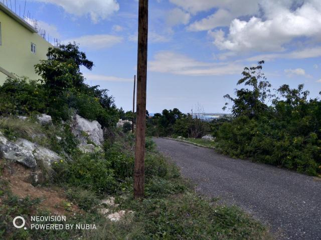 Westmoreland, Negril image - 13