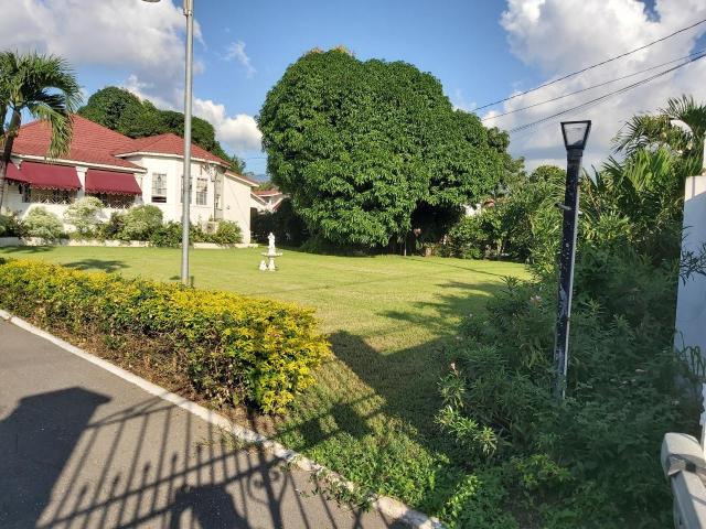 Kingston & St. Andrew, Kingston 10 image - 1