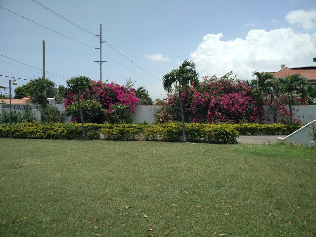 Kingston & St. Andrew, Kingston 10 image - 2