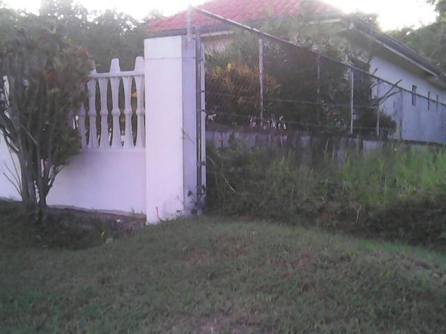 St. Ann, St. Ann's Bay image - 5