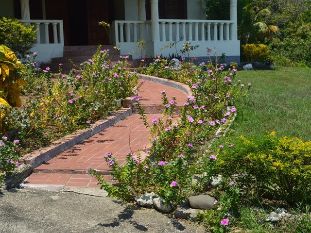 St. Mary, Port Maria image - 6