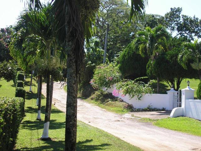 St. Ann, Ocho Rios image - 35